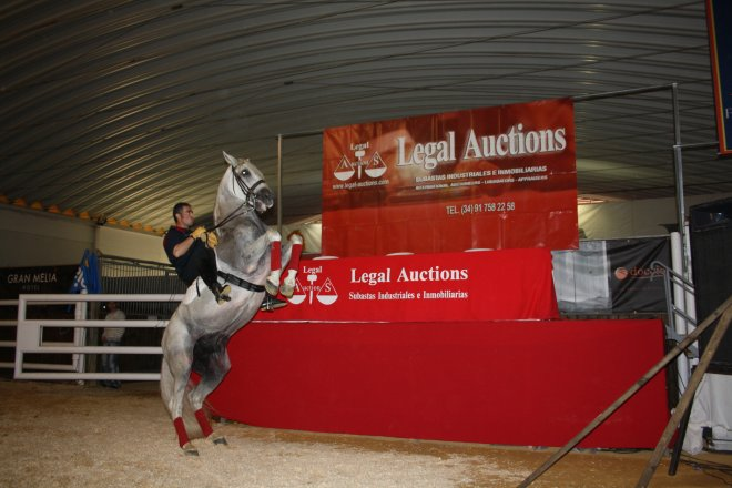 LEGAL AUCTIONS 10